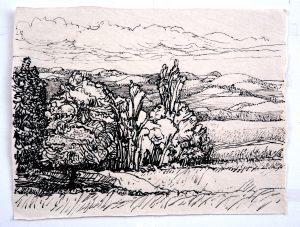 Castilla y Leon - Rein Dool, 24,5x32 cm. inkt 2005