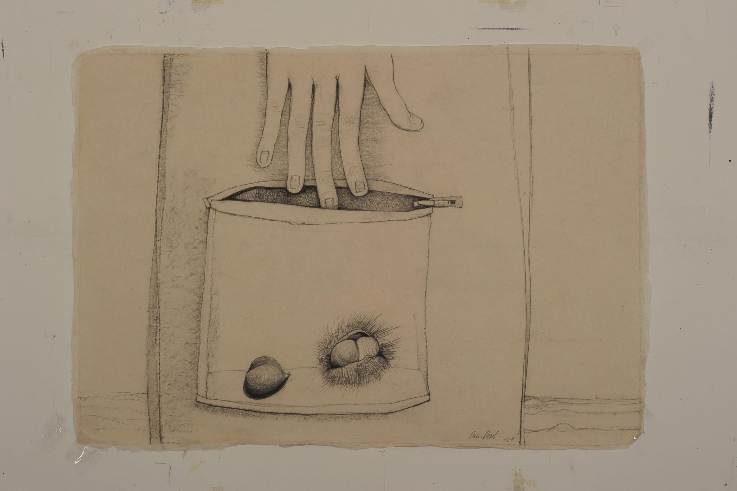 Wat een kastanje voor een ding is blz. 789 - Rein Dool, 70x100 cm. houtskool en potlood 2011